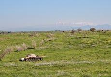 Gesprengter Behälter in Golan Heights gegen den Hintergrund vom Hermon stockfotografie