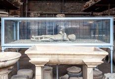 Gesso di un driver della biga di Pompei che è morto durante l'eruzione del Mt vesuvius immagini stock libere da diritti