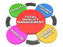 Gestão de qualidade total Imagem de Stock