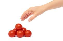Gest för tomat för härliga kvinnliga handhåll röd bakgrund isolerad white Arkivbilder
