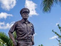 Gestalte van Admiraal Nimitz royalty-vrije stock afbeelding