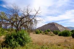 Gestalten Sie Ansicht bei Teotihuacan mit Bäumen und Pyramide des Sun landschaftlich Stockfoto