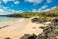 Gestalten Sie Ansicht des Strandes an Punta-Kormoran, Galapagos landschaftlich Lizenzfreie Stockfotografie