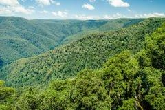 Gestalten Sie Ansicht eines stark bewaldeten Tales und der Berge landschaftlich Stockbilder