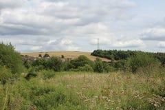 Gestalten Sie Ansicht von der Wiese über Ackerland zum Waldland landschaftlich Lizenzfreie Stockbilder