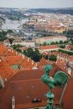 Gestalten Sie Ansicht zu den Brücken auf die Moldau-Fluss mit Hahnvordergrund auf Kathedrale landschaftlich stockfoto