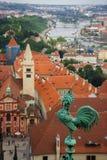Gestalten Sie Ansicht zu den Brücken auf die Moldau-Fluss mit Hahnvordergrund auf Kathedrale landschaftlich stockfotos