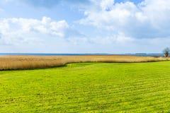 Gestalten Sie beim Achterwasser auf der Insel von Usedom landschaftlich Stockbilder