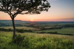 Gestalten Sie Bild Sommer-Sonnenuntergangansicht über englische Landschaft landschaftlich Stockbild