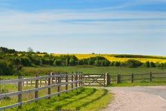 Gestalten Sie Bild von Feldern mit blauem Himmel und Wolken landschaftlich Stockbild