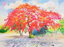 Gestalten Sie buntes des Pfaublumenbaums und -gefühls im Rot landschaftlich vektor abbildung