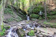 Gestalten Sie den Anfang der Wanderung zu sapte scari Wasserfall von Brasov landschaftlich Stockfotografie