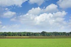 Gestalten Sie in der landwirtschaftlichen Nutzfläche mit drastischen Wolken, die Niederlande landschaftlich Stockbilder