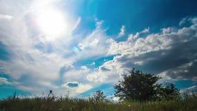 Gestalten Sie, die Wolken landschaftlich, die über ein Feld mit Bäumen sich bewegen stock video footage