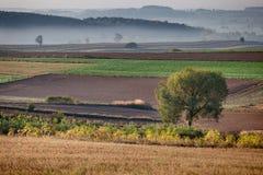 Gestalten Sie an einer frühen Stunde des Tages landschaftlich Stockbild