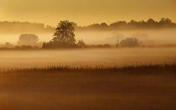Gestalten Sie an einer frühen Stunde des Tages landschaftlich Stockfotos