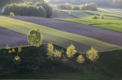 Gestalten Sie an einer frühen Stunde des Tages landschaftlich Stockfoto