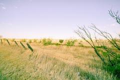 Gestalten Sie entlang I 40, Route 66, gerade aus Adrian, Texas, USA heraus landschaftlich Stockfotos
