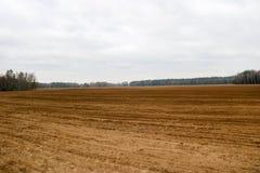 Gestalten Sie Feld, Braunerde mit Betten, Furchen für das Pflügen, Saatgetreide auf einem Hintergrund des Waldes landschaftlich Lizenzfreies Stockfoto