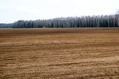 Gestalten Sie Feld, braunes gegrabenes oben Land mit Betten, Furchen für das Pflügen, Saatgetreide gegen einen Hintergrund eines  Stockfoto