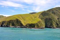Gestalten Sie gesehen von der Fähre von Wellington zu Picton landschaftlich Lizenzfreies Stockfoto