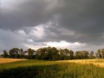 Gestalten Sie Gewitterwolken über dem Feld und Bäume an einem Sommertag landschaftlich Lizenzfreies Stockbild
