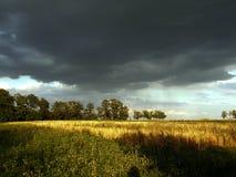 Gestalten Sie Gewitterwolken über dem Feld und Bäume an einem Sommertag landschaftlich Lizenzfreie Stockbilder