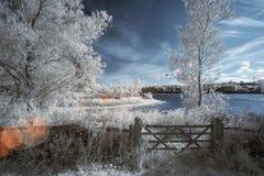 Gestalten Sie im Infrarot von See in der englischen Landschaft im Sommer landschaftlich Lizenzfreie Stockfotos