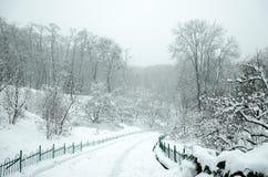 Gestalten Sie im Winterpark landschaftlich Stockfotos