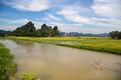 Gestalten Sie mit Bergen, Reisfeldern und Fluss landschaftlich Stockbild