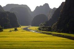 Gestalten Sie mit Bergen, Reisfeldern und Fluss landschaftlich Lizenzfreies Stockfoto