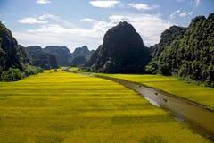 Gestalten Sie mit Bergen, Reisfeldern und Fluss landschaftlich Stockfotografie