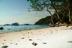 Gestalten Sie mit blauem Wasser des weißen Sandes und grünen Bäumen landschaftlich Lizenzfreies Stockfoto