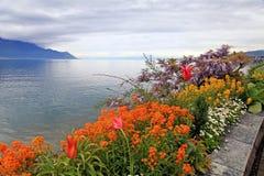 Gestalten Sie mit Blumen und Genfersee, Montreux, die Schweiz landschaftlich. Stockfotografie
