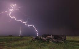 Gestalten Sie mit dem Blitz landschaftlich, der hinter totem Baumstamm schlägt Stockbilder