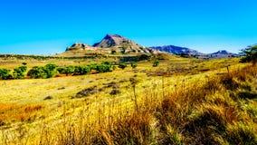 Gestalten Sie mit dem fruchtbaren Ackerland entlang Landstraße R26, in der Freistaatprovinz von Südafrika landschaftlich Stockfotografie