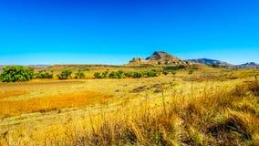 Gestalten Sie mit dem fruchtbaren Ackerland entlang Landstraße R26, in der Freistaatprovinz von Südafrika landschaftlich Stockbilder