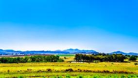 Gestalten Sie mit dem fruchtbaren Ackerland entlang Landstraße R26, in der Freistaatprovinz von Südafrika landschaftlich Lizenzfreie Stockfotografie