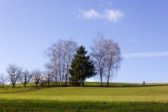 gestalten Sie mit dem Manngehen und -baum auf blauer Himmel im Dezember adve landschaftlich Lizenzfreies Stockbild