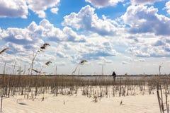 Gestalten Sie mit einem bewölkten Himmel und einem REEDsandigen Strand landschaftlich Stockbild