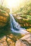 Gestalten Sie mit einem Wasserfall auf einem Gebirgsfluss in einem Wald landschaftlich Stockbild