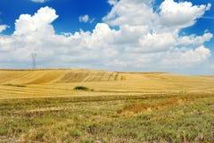 Gestalten Sie mit Feld, blauem Himmel und Wolken landschaftlich Stockfoto