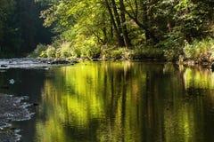 Gestalten Sie mit Fluss, Bäumen und Reflexion auf Oberfläche landschaftlich Stockbilder