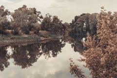 Gestalten Sie mit Fluss, grünen Bäumen und Himmel landschaftlich lizenzfreies stockfoto