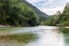 Gestalten Sie mit Gebirgsbäumen und einem Fluss in der Front landschaftlich Lizenzfreie Stockbilder