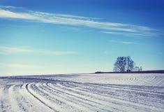 Gestalten Sie mit geschneitem bebautem landwirtschaftlichem Feld im Winter landschaftlich Stockbild