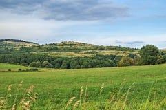 Gestalten Sie mit grünen Feldern und den Hügeln landschaftlich, die mit belaubten Bäumen gezeichnet werden stockbild