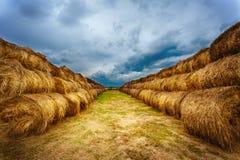 Gestalten Sie mit Heuballen auf dem Feld nach Ernte landschaftlich Stockfotos