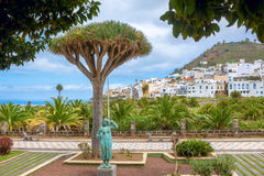 Gestalten Sie mit Palmenpark und -Wohnviertel im Las Palmas landschaftlich Stockfotos