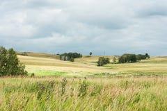 Gestalten Sie mit seltenen Bäumen in den Hügeln, die Straße landschaftlich, die in die Felder führt Stockfotos